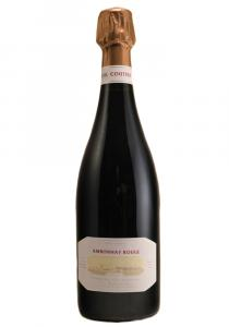R. H. Coutier 2017 Ambonnay Rouge